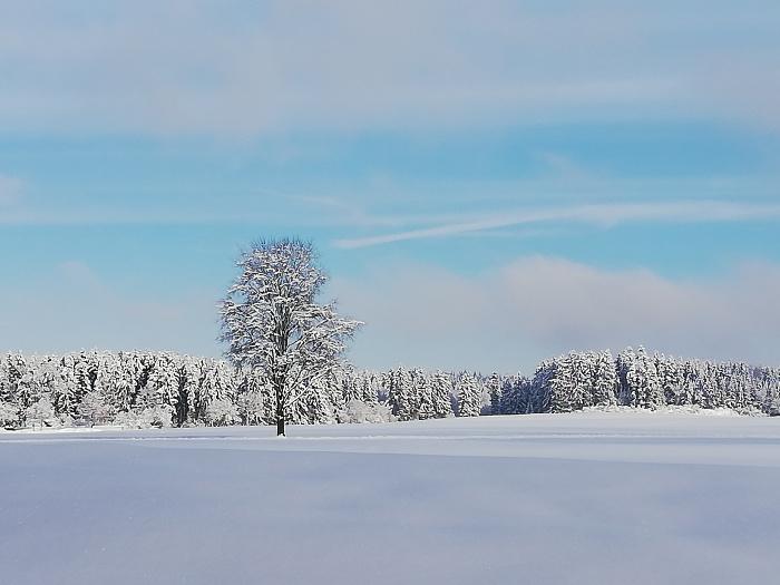 Winter_Fewo